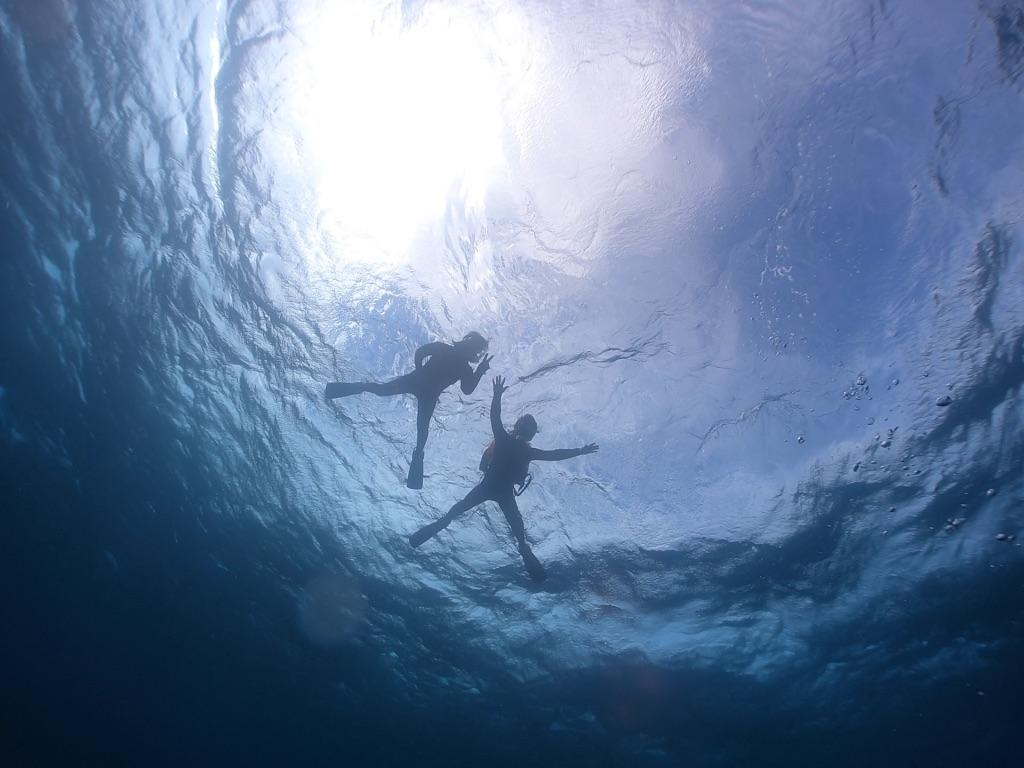 海に浮かんで瞑想?!